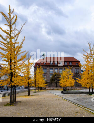 Invalidenpark, Berlin. Federal Ministry for Economic Affairs and Energy building exterior with golden gingko trees - Stock Photo