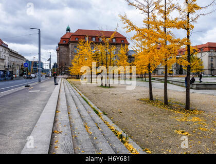 Government administration building & Yellow Maidenhair, Gingko, trees in Invaliden Park in autumn. Mitte Berlin - Stock Photo