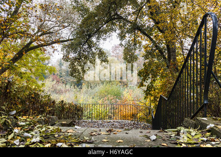 Colorful autumn forest with a railed viewing point - Stock Photo