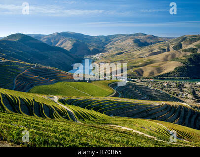 Portugal, the Douro Valley, the Port Wine district, vineyards and the Douro river at Pinhao - Stock Photo