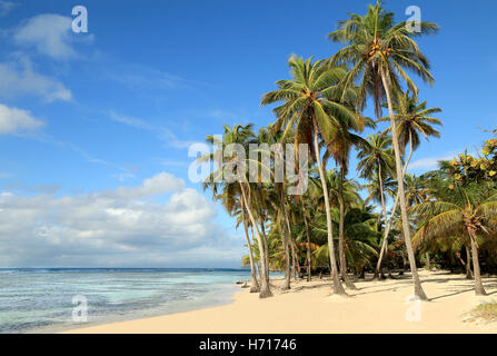 Beautiful white sand beach in Guadeloupe (France), Caribbean Islands - Stock Photo
