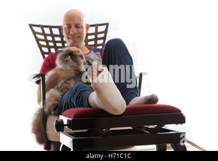 Pet Cat With Bone Fracture And Plaster Cast Resting On A