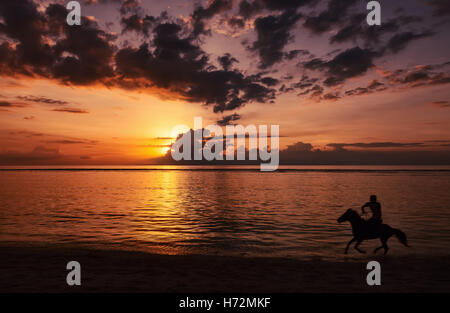 Silhouette of unrecognizable human riding a horse on beach  at beautiful sunset time. - Stock Photo