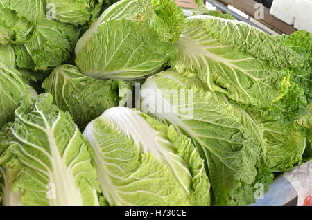 food aliment leaf sell isolated colour garden leaves agriculture farming summer summerly soft harvest small tiny - Stock Photo