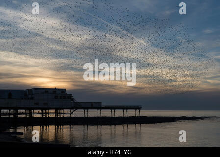 A murmuration of starlings flock over Aberystwyth's Victorian Pier dating back to 1865. - Stock Photo