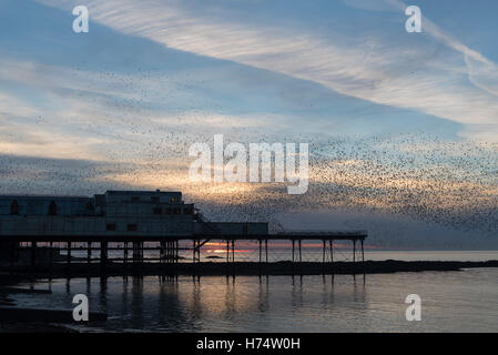 A murmuration of starlings flock over the Victorian Pier dating back to 1865. - Stock Photo