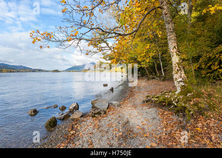 Autumnal Trees on the Shore of Derwent Water, a popular tourist destination in the English Lake District. - Stock Photo