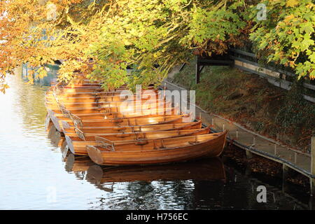 Rowing boats on the river at Dedham - Stock Photo