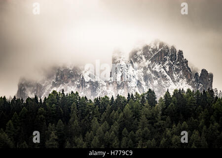 Snow covered dolomite mountains and forest, Val Gardena, South Tyrol, Italy - Stock Photo