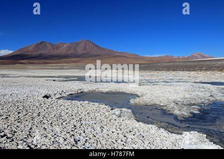 Laguna Ramaditas, altiplano, southern Bolivia South America - Stock Photo