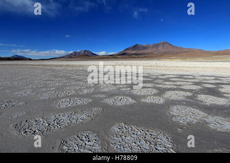 Laguna Ramaditas, altiplano, southern Bolivia South America - Stock Photo
