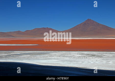 The nice red colored Laguna Colorada in southern Bolivia, South America - Stock Photo