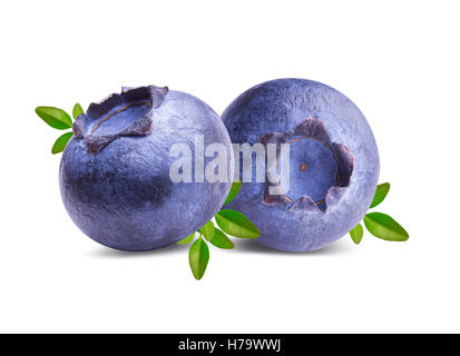 Fresh Bilberries blueberries, isolated on white background - Stock Photo