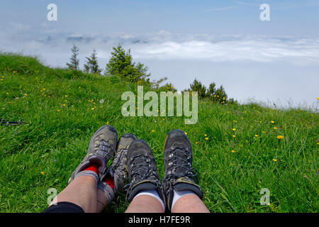 Dense fog, Hirschberg summit, foothills of the Alps, Upper Bavaria, Bavaria, Germany - Stock Photo