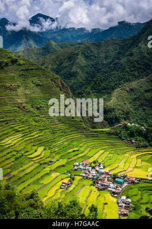 Batad Village - Stock Photo
