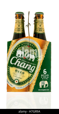 Winneconne, WI - 3 November 2016:  Six pack of Chang beer on an isolated background. - Stock Photo