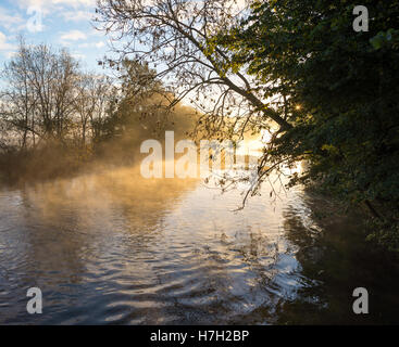 Mist rising in a sunrise in a wintry, frosty, morning countryside scene in the River Avon Valley on the edge of - Stock Photo