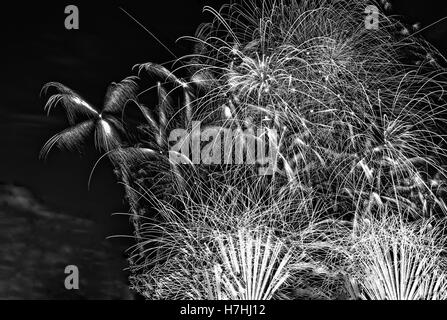 Close view of black and white fireworks in the night sky on the night of 31 December to 1 January. close, horizontal - Stock Photo