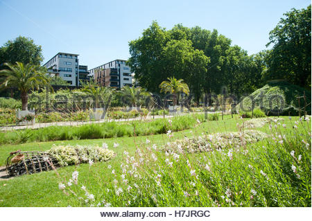 Paris, Parc de Bercy, 128 Quai de Bercy, 75012 Paris, Jardins de la Memoire - Stock Photo