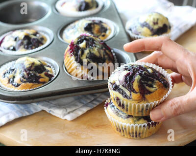 Homemade blueberry muffins in paper cupcake holder - Stock Photo