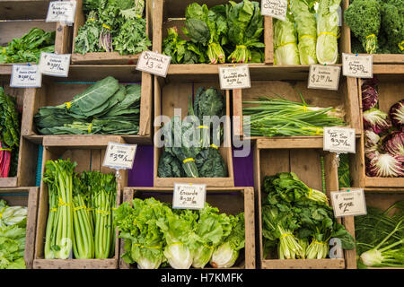 Fresh produce for sale at the Farmer's Market in Riverfront Park, Corvallis, Oregon, USA. - Stock Photo