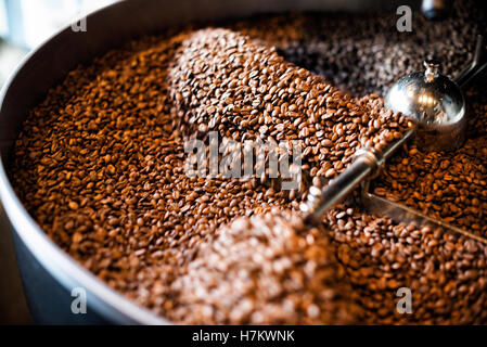 Freshly roasted coffee beans from a large roaster in the cooling cylinder. Motion blur - Stock Photo