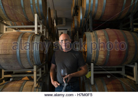Portrait confident vintner tasting red wine in winery barrel room - Stock Photo