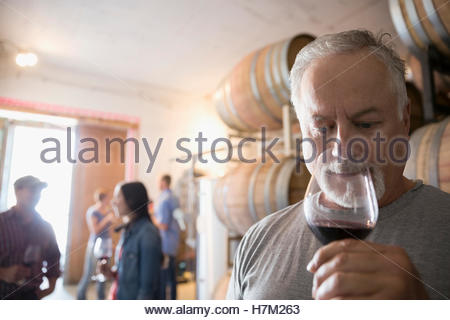 Senior male vintner smelling and tasting red wine in winery barrel room - Stock Photo