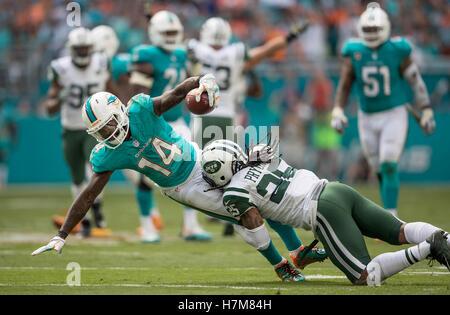 Miami Gardens, Florida, USA. 6th Nov, 2016. Miami Dolphins wide receiver Jarvis Landry (14) stretches for yardage - Stock Photo