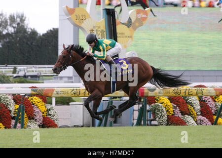 Kyoto, Japan. 23rd Oct, 2016. Satono Diamond ( Christophe Lemaire) Horse Racing : Satono Diamond ridden by Christophe - Stock Photo
