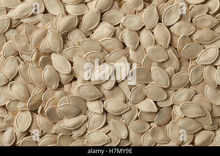 Dried raw pumpkin seeds full frame - Stock Photo