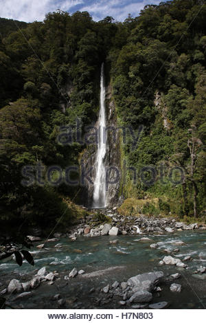 thunder creek falls, haast river, mount aspiring national park, south island, new zealand - Stock Photo