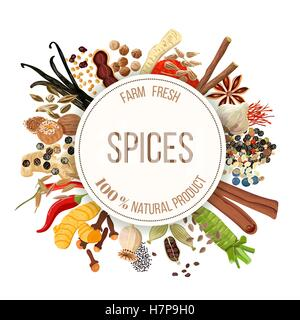 Culinary spices big set with round emblem. Bunch of cooking seasonings. For cosmetics, restaurant, store, market, - Stock Photo