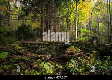 Wonderland. Historic bridge abandoned in the forests of the Smoky Mountains in the Elkmont Historic District. Gatlinburg, - Stock Photo