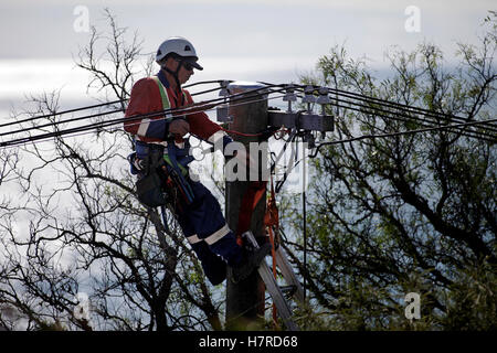 power company worker on ladder installing high voltage power cables - Stock Photo