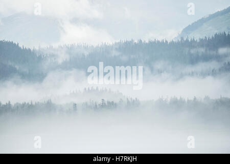 Dense cloud and fog sits over mountains and forests on the Alaskan coastline; Alaska, United States of America - Stock Photo