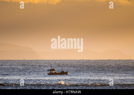 Aberystwyth Wales UK, Monday 07 November 2016 UK weather: A small inshore fishing boat sets out in the evening sunshine - Stock Photo