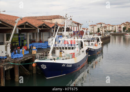 Fishing boats unloading tuna in the harbour at St Jean de Luz - Stock Photo