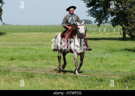 Gaucho on a horse; Argentina - Stock Photo