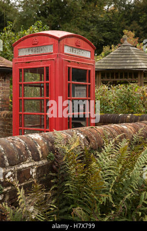 UK, England, Buckinghamshire, West Wycombe, High Street, ferns in front of K6 phone box - Stock Photo