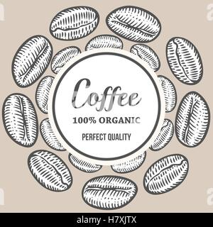 Coffee beans Hand hand drawn botany vector banner illustration. Organic Coffee Decorative doodle of caffeine food. - Stock Photo