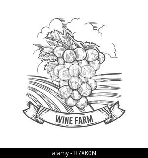 Wine farm badge. Monochrome vintage engraving grape sign isolated on white background. Sketch vector hand drawn - Stock Photo