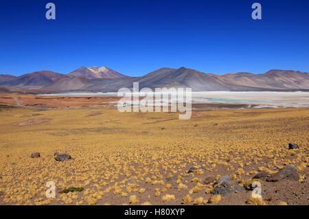 Salar Aguas Calientes, Atacama desert, Chile - Stock Photo