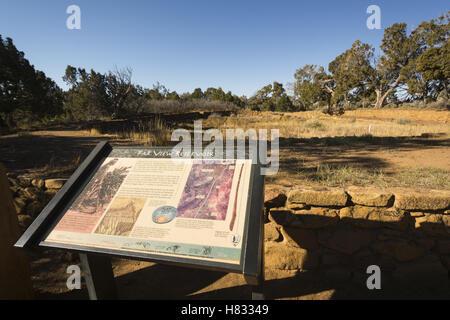 Colorado, Mesa Verde National Park, Far View ruins - Stock Photo