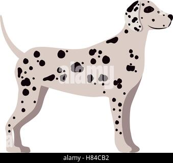 cute dalmatian dog animal icon over white background. side view. vector illustration - Stock Photo