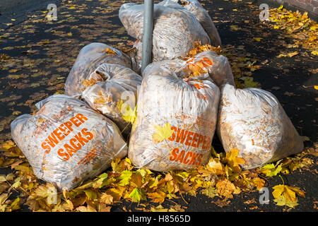 Liverpool, Merseyside, UK. 10th November, 2016. Autumn Clear Up.  Torrential downpours followed by frosty nights - Stock Photo