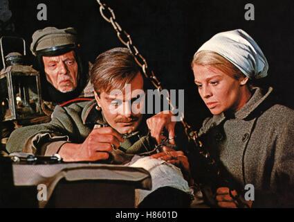 Doktor Schiwago, (DOCTOR ZHIVAGO) USA 1965, Regie: David Lean, OMAR SHARIF, JULIE CHRISTIE Stock Photo