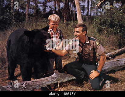 Der sanfte Ben, (GENTLE GIANT) USA 1967, Regie: James Neilson, Bär 'Ben', CLINT HOWARD, DENNIS WEAVER, Stichwort: - Stock Photo