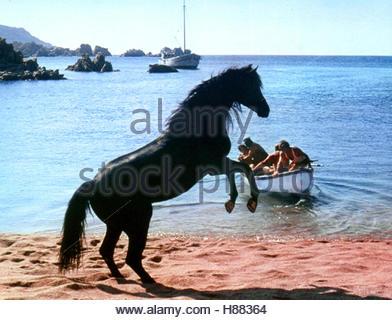 Der schwarze Hengst, (THE BLACK STALLION) USA 1979, Regie: Carroll Ballard, Stichwort: Strand, Meer, Pferd, Boot - Stock Photo