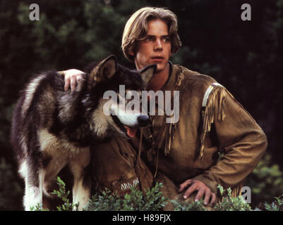 Wolfsblut 2 - Das Geheimnis des weißen Wolfes, (WHITE FANG 2: MYTH OF THE WHITE WOLF) USA 1994, Regie: Ken Olin, - Stock Photo